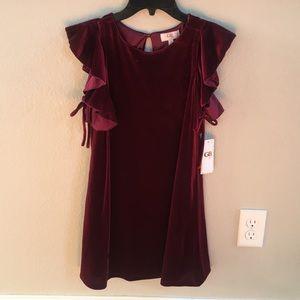 GB girls ruffle sleeves velvet dress
